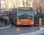 autotrolej bus