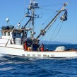 ribar brod more