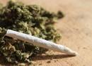 marihuana droga