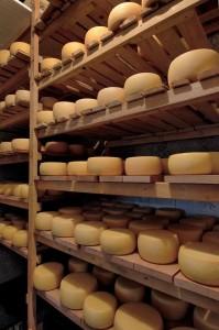 dani janjetine i sira