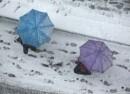 snijeg