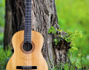 classical-guitar-park-leaning-against-tree-51784132